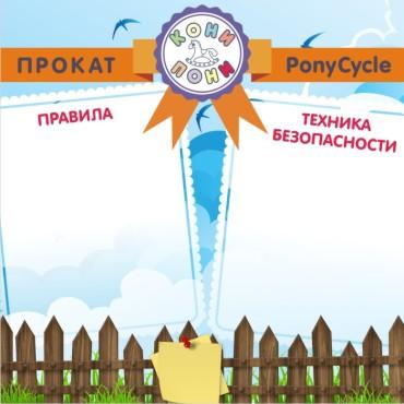 Баннер Кони-пони